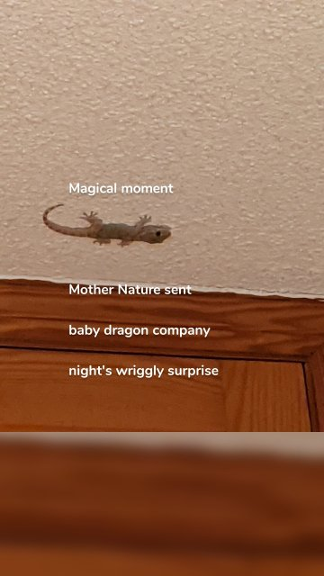 Magical moment Mother Nature sent baby dragon company night's wriggly surprise