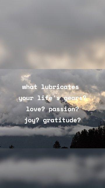 what lubricates your life's gears? love? passion? joy? gratitude?